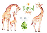 Hand drawn watercolor tropical plants set and giraffe. Exotic palm leaves, jungle tree, brazil tropic botany elements and monkeys. Perfect for fabric design. Aloha set - 148819541