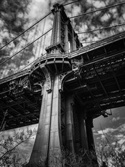 Manhattan bridge and plant with cloudy sky in black and white