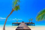 Dreamscape Escape On Maldives - 148955534