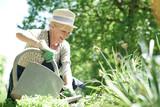 Senior woman gardening on beautiful spring day - 148963953