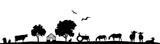 Silhouette Feld und Tiere - 148966192