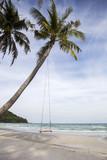 Swing on a tropical beach - 149277303
