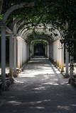 Arcs at Rio de Janeiro Botanical Garden
