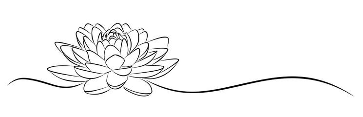 lotus Sketch.