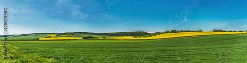 Fototapeta Landschaft mit Rapsfelder, Windräder Panorama