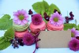 Grußkarte - Macarons - Sommerlich mit Blüten dekoriert