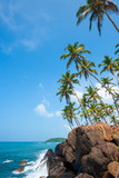 Tropical coast at remote island with palm trees wave crushing into rocks
