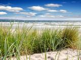 Urlaub in Deutschland auf der wunderschönen Insel Rügen: Dünengras an Ostseeküste :) - 150018147