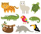 South American animals vector set