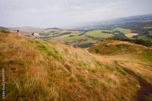 Pentland Hills in Scotland. Poster
