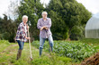 senior couple with shovels at garden or farm