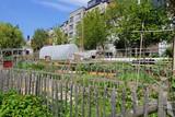 potager urbain particulier à Bruxelles  - 150218506