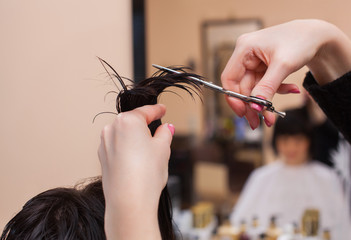 The hairdresser does a haircut with scissors of hair to a young girl, a brunette in a beauty salon.