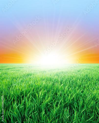 Summer countryside sensation
