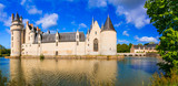 Majestic medieval castles in Loire valley - Le Plessis Bourre. France - 150661359