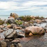 Rocky Shores of Canada
