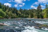 Fototapety Ox Bow At The Hoh River, Washington State, USA