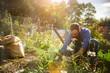 man planting crops in communal garden