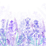 Floral background with  lavender flowers and place for text. Watercolor illustration on a white background. Invitation, greeting card or an element for your design. - 151026595