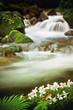 Waterfall - 151028358