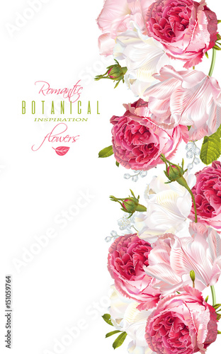 Vector vertical, banner with garden roses and tulip flowers on white background. Romantic design for natural cosmetics, perfume, women products. Can be used as greeting card or wedding invitation