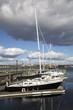 Halifax City Marina