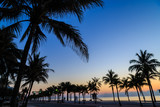 Gorgeous dawn over the sea with a silhouette of palms at Fort Lauderdale beach.