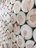 Holz, zu sauberem Stapel aufgebaut