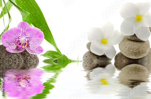 orchidée et fleurs blanches de frangipanier sur galets  - 151213968