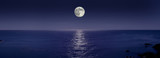 Fototapety 昇る満月