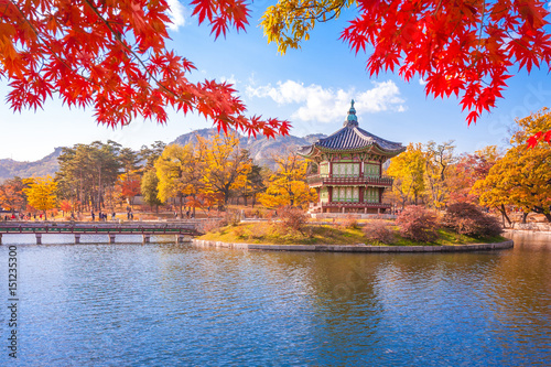Gyeongbokgung palace with Maple leaves, Seoul, South Korea. Poster