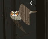 Owl hunts in the night forest
