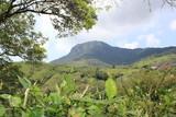 Cerro El Castellón. San Luis, Antioquia, Colombia.