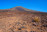 El Taide volcanic foothills