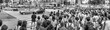 TOKYO - JUNE 1, 2016: Panoramic view of Shibuya Crossing with people at sunset. Shibuya is a popular district of Tokyo