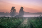 Landscape with mist and fog at summer night in northern Europe