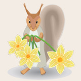Squirrel with spring daffodits