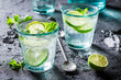 Cold and tasty Mojito with lime and mint - 151508982