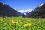 Frühling in den Alpen, Bayern