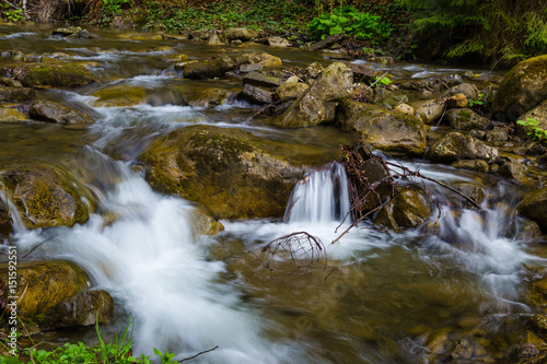 Fast mountain river , spring in Carpathians, Ukraine Poster