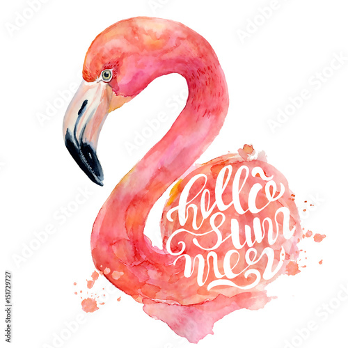 watercolor-pink-flamingo-hand-painted-illustration