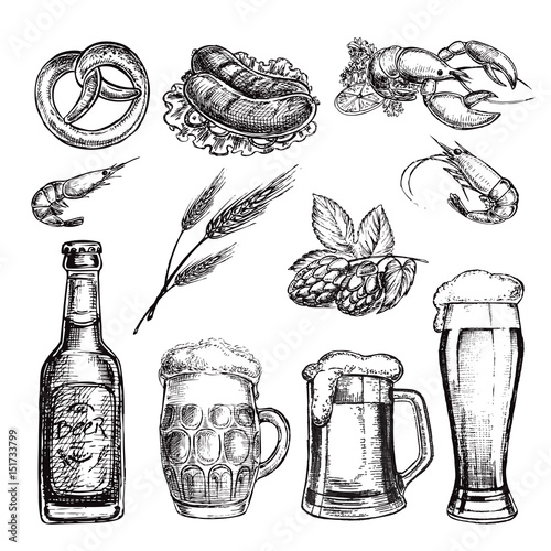 Fototapeta hand drawn sketch illustration set beer