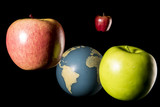 Red and green apples in orbit around the Earth Globe. Hi to Issac Newton. Isolated on black background. Studio Shot.
