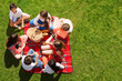 Friends sitting near picnic basket on green meadow