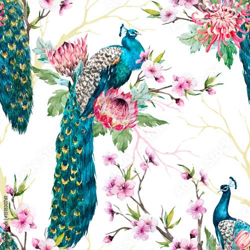 Fototapeta Watercolor peacock vector pattern