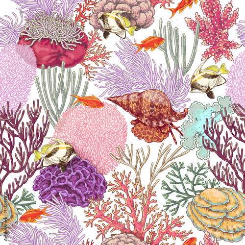 Coral Reef and  Fishes Pattern - 151849108
