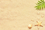 Sea shells and palm on the sand background. Summer beach. - 151891534