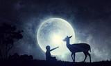 Natural Safari landscape and deer