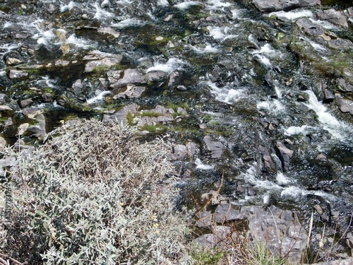 In de dag Stenen Cordoba, Argentina. Paisaje. Rios. Rocas. Arboles. Naturaleza. Belleza. Flores
