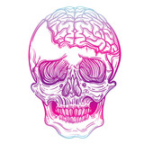 Vector illustration with a human skull and brains. Gothic brutal skull. For print t-shirts or book coloring. - 151981968